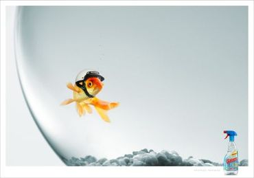 Fish71_25