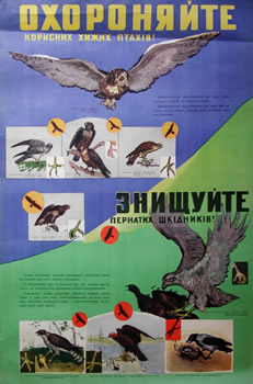 Protect_avian_predators_1959_anonymous
